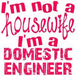 Domestic Engineer